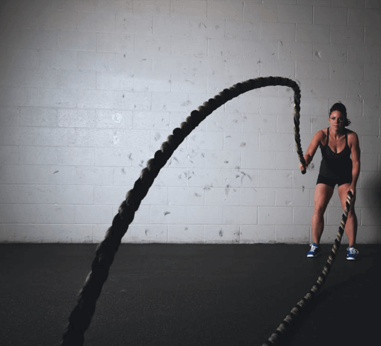 Insights on Fitness Enthusiasts