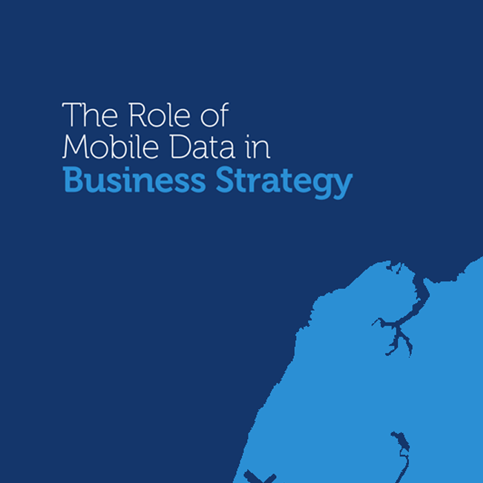 Mobile Data for Business Strategy